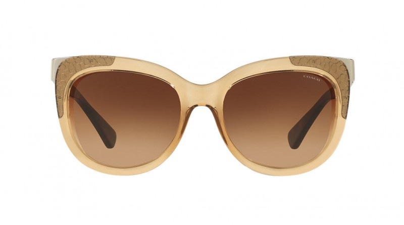 Front of Coach square brown sunglasses