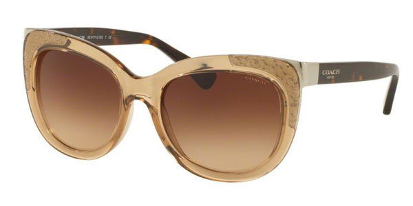 Side of Coach square brown sunglasses